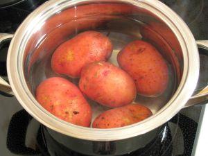 اعشاش البطاطا قرتيني 478_0274v3g_1439_b